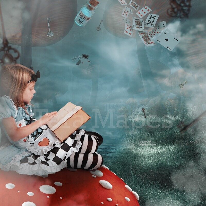 Down the Rabbit Hole - Falling -Alice in Wonderland inspired- Tunnel - Digital Background / Backdrop