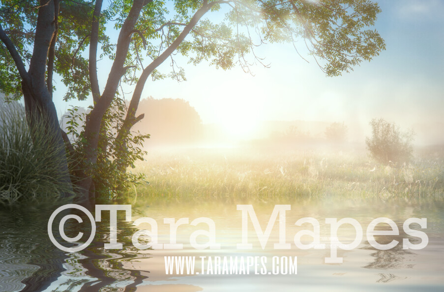 Tree by Pond Lake - Creamy Sunset Field by Pond - Magical Field Sunset  Photoshop Digital Background / Backdrop