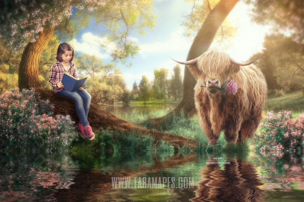 Highland Cow by Tree - Spring Setting by Pond Lake - Spring Tree Easter Tree - Creamy Soft Sunset  Photoshop Digital Background / Backdrop