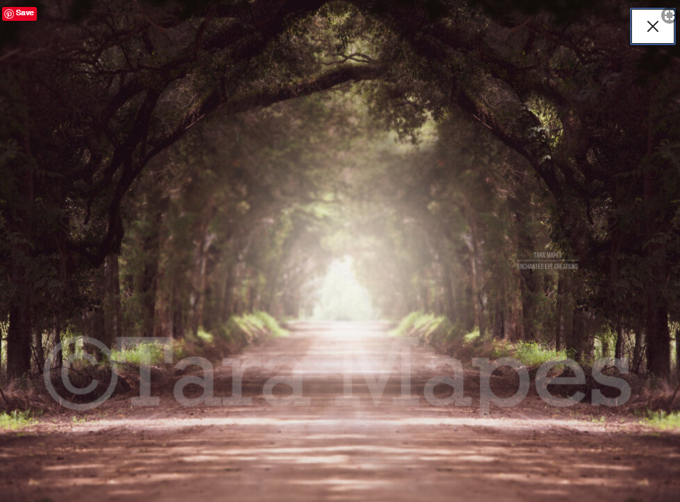 Dirt Road - Forest Tunnel Long Dirt Road Surrounded by Trees Digital Background Backdrop