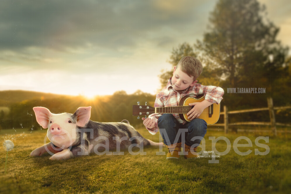 Baby Pig on Farm- Piglet in Country Field Digital Background