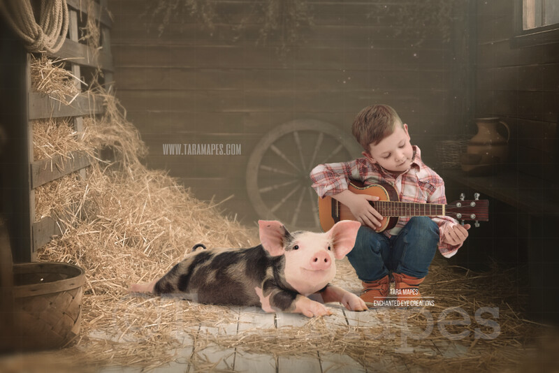 Piglet in a Barn Layered PSD Digital Background Backdrop by Tara Mapes - Pig in Barn on Farm