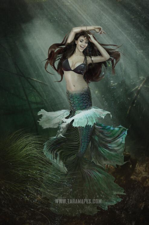 Realistic Dark Mermaid Underwater 3 - Layered PSD Mermaid Digital Background Backdrop - Separate Element Layers -Tail Layer is Separate