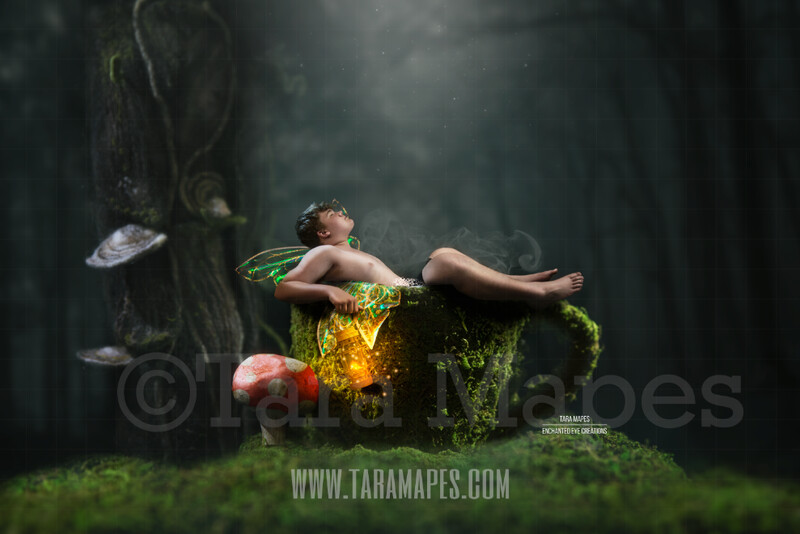 Moss Covered Fairy Cup with Red Spotted Mushroom in Enchanted Forest Digital Background / Backdrop for a Fairy Scene