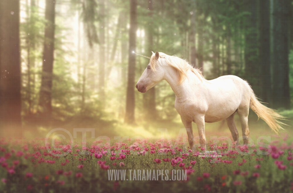 Unicorn in Field of Flowers by Forest Digital Background Backdrop