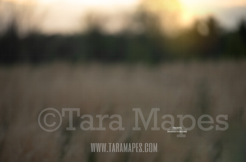 Blurred Field #3  $1 Digital Background Backdrop by Tara Mapes