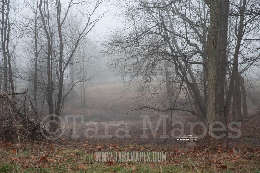 Foggy Wood Path 3 $1 Digital Background Backdrop