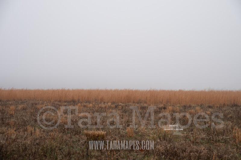 Foggy Field 2 $1 Digital Background Backdrop