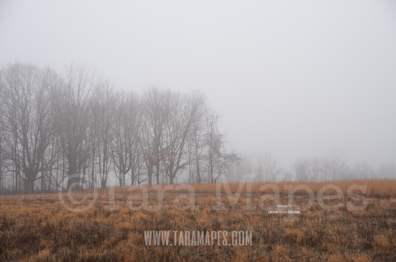 Foggy Field 4 $1 Digital Background Backdrop