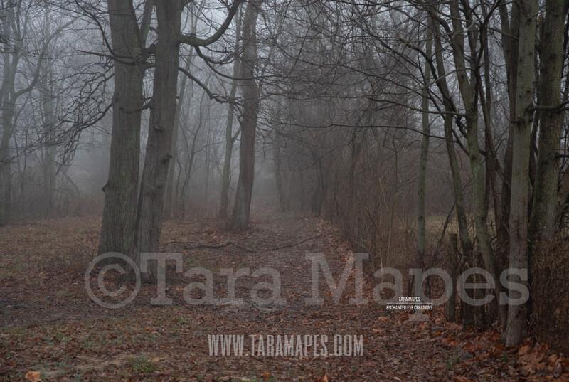 Foggy Wood Path 1 $1 Digital Background Backdrop