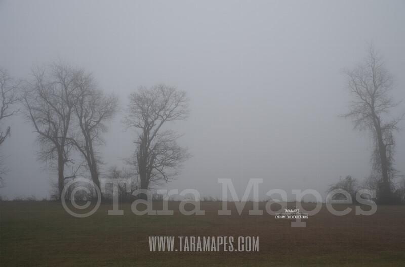 Foggy Trees 9 $1 Digital Background Backdrop