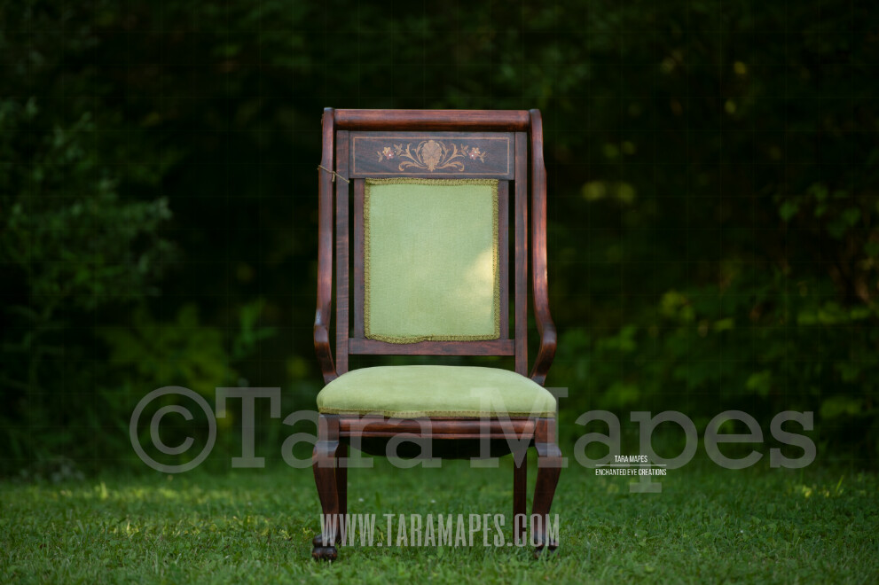 Nature Chair $1 Digital Background Backdrop