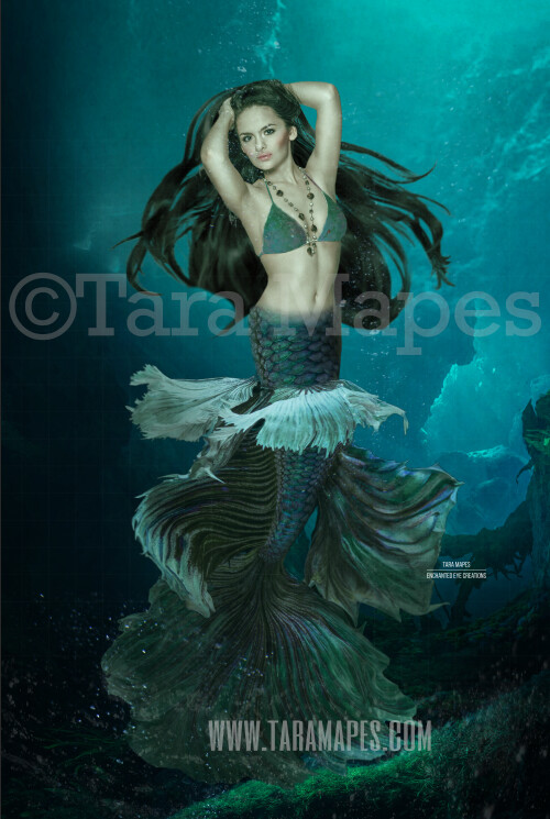 Realistic Dark Mermaid Underwater 5 - Layered PSD Mermaid Digital Background Backdrop - Separate Element Layers -Tail Layer is Separate