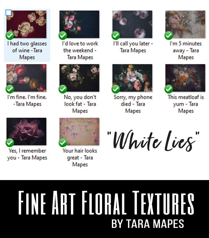 10 Old Masters Floral Textures -Floral Backdrops - Digital Backgrounds - WHITE LIES Photoshop Overlays by Tara Mapes