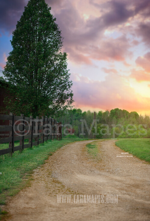 Country Road - Sunset on Farm- Creamy Background -  Digital Background / Backdrop