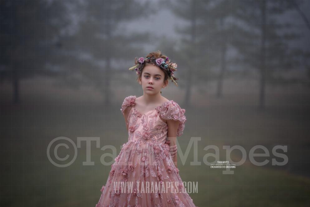 Foggy Morning - Creamy Natural Background - Mist Misty Scene- Digital Background by Tara Mapes