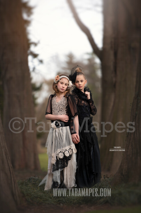 Two Trees in Creamy Forest - Forest Scene - Portrait Couture Digital Background by Tara Mapes