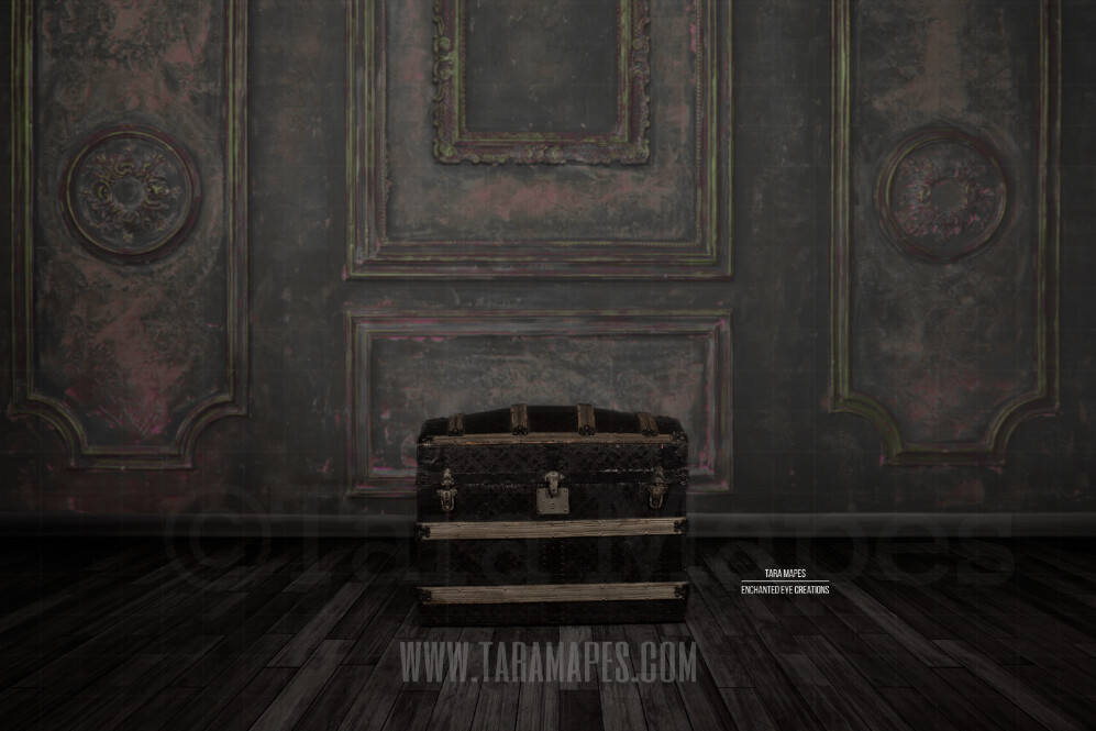 Studio Trunk Vintage Wall with Wood Floor Background Digital Background by Tara Mapes