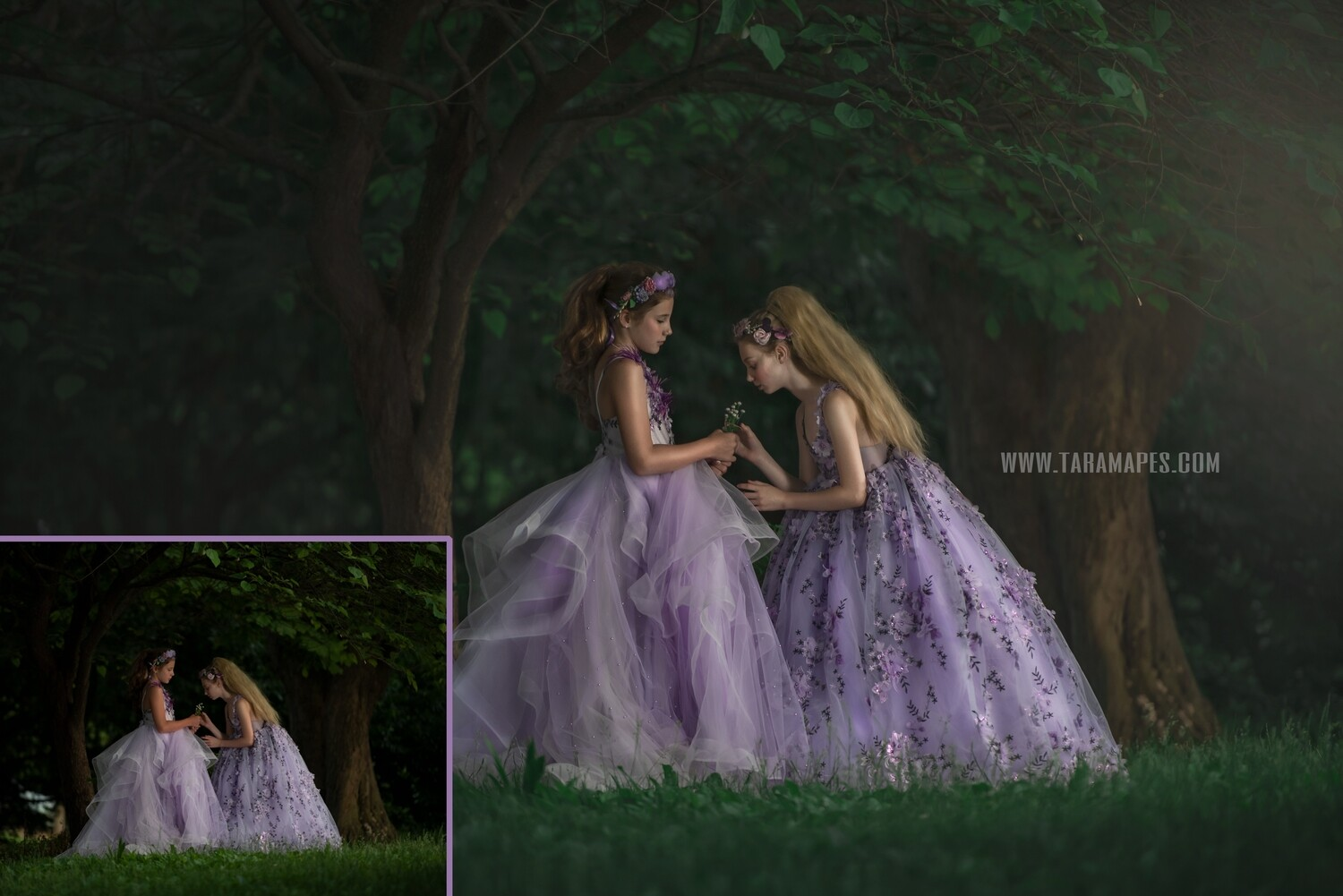 The Enchanted Forest Photoshop Edit Tutorial by Tara Mapes