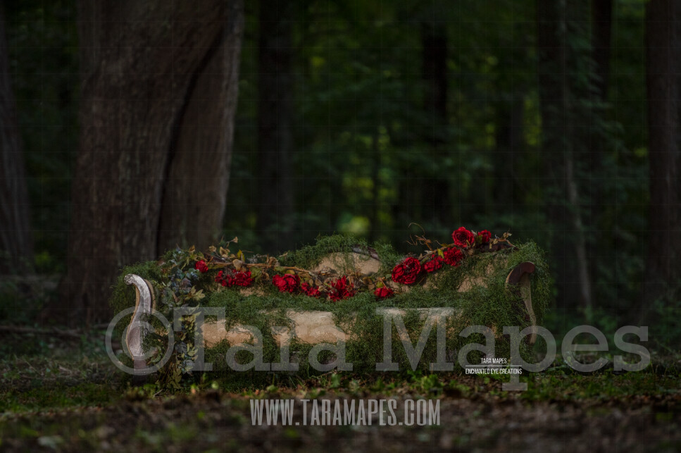 Alice in Wonderland Mossy Couch with Roses in Forest Digital Background Backdrop