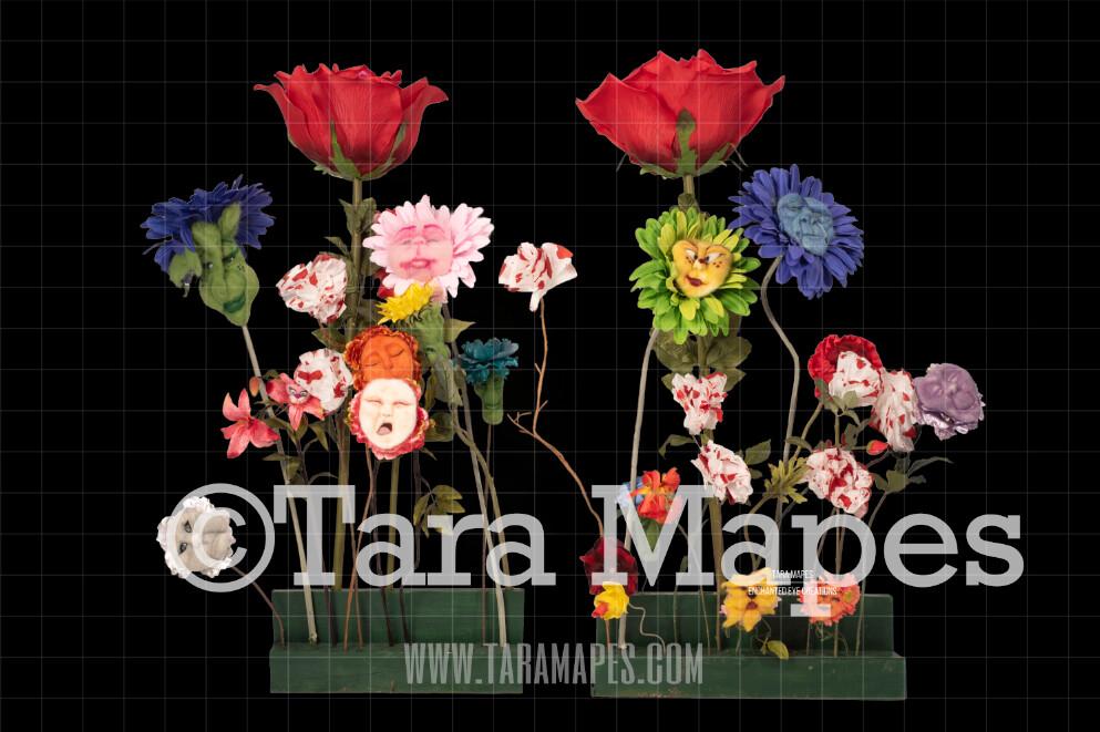 Alice in Wonderland Talking Flowers PSD file WITH mask enabled Digital Background Backdrop