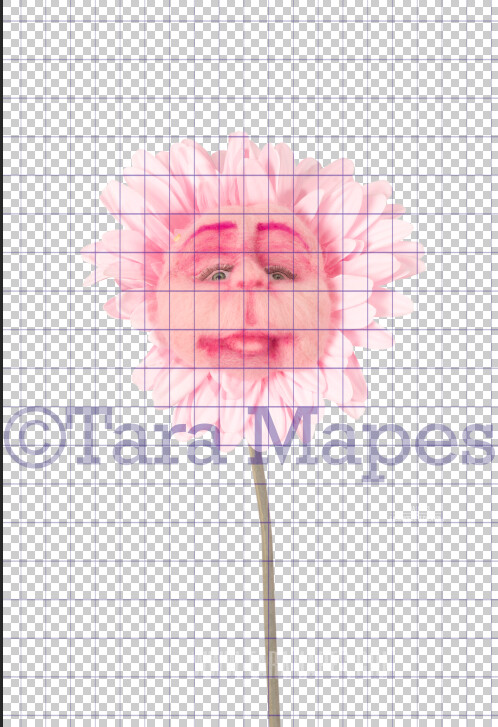 Talking Flower- Pink with Face - Flower Overlay by Tara Mapes - Alice in Wonderland Inspired PNG - Digital Backgrounds and Overlays by Tara Mapes Enchanted Eye Creations