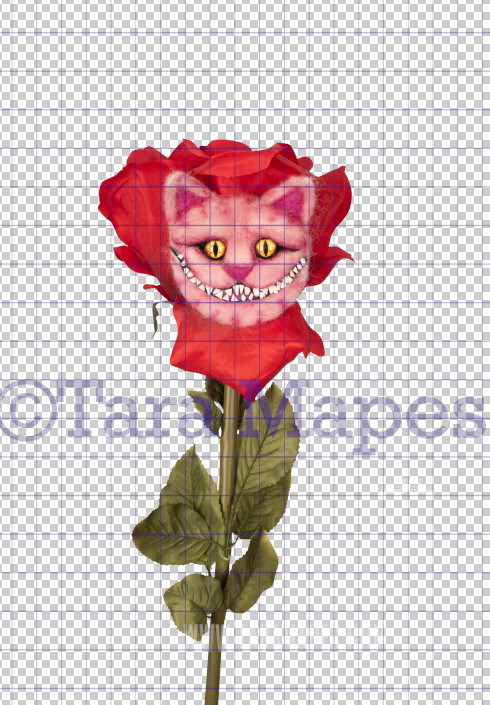 Talking Flower- Cheshire Cat Face on Flower with Face - Flower Overlay by Tara Mapes - Alice in Wonderland Inspired PNG - Digital Backgrounds and Overlays by Tara Mapes Enchanted Eye Creations