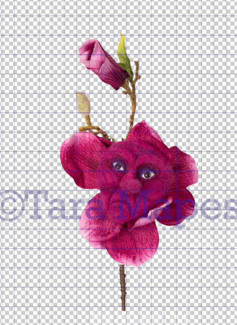 Talking Flower-  Fuschia Flower with Mad Face- Flower Overlay by Tara Mapes - Alice in Wonderland Inspired PNG - Digital Overlays by Tara Mapes Enchanted Eye Creations