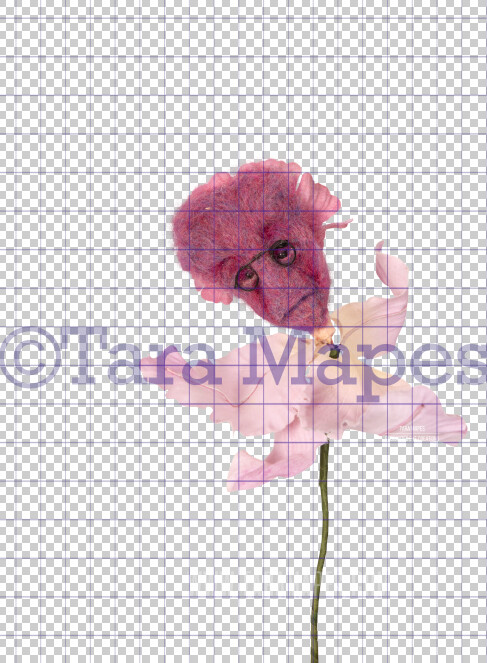 Talking Flower-  Lavender Flower with Glasses- Flower Overlay by Tara Mapes - Alice in Wonderland Inspired PNG - Digital Overlays by Tara Mapes Enchanted Eye Creations