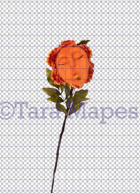Talking Flower-  Orange Flower with Face and Tongue Sticking - Flower Overlay by Tara Mapes - Alice in Wonderland Inspired PNG - Digital Overlays by Tara Mapes Enchanted Eye Creations