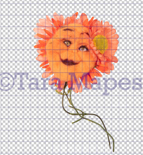 Talking Flower-  Orange Flower with Funny Face - Flower Overlay by Tara Mapes - Alice in Wonderland Inspired PNG - Digital Overlays by Tara Mapes Enchanted Eye Creations