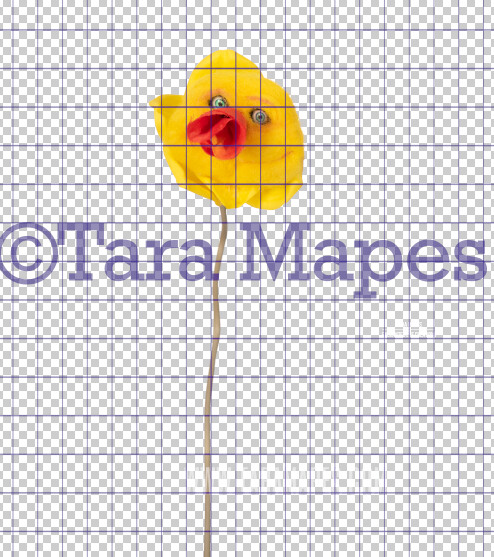 Talking Flower-  Yellow and Orange Trumpet Flower with Funny Face- Flower Overlay by Tara Mapes - Alice in Wonderland Inspired PNG - Digital Overlays by Tara Mapes Enchanted Eye Creations