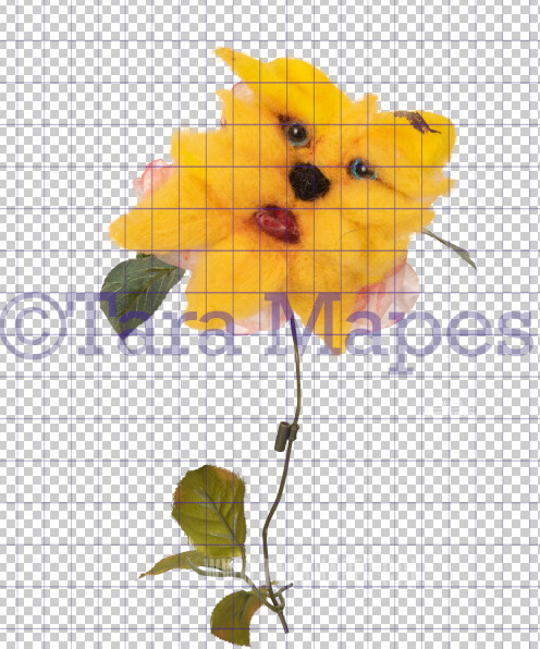 Talking Flower-  Yellow Tiger Flower with Funny Face- Flower Overlay by Tara Mapes - Alice in Wonderland Inspired PNG - Digital Overlays by Tara Mapes Enchanted Eye Creations