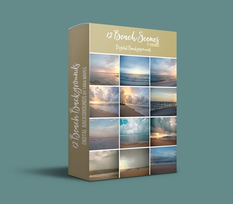 12 Beach Digital Backgrounds - SET OF 12  - Beaches - Stormy Beach Cape Bay - Ocean Pier - Pastel Beach Scene - Digital Background Backdrop