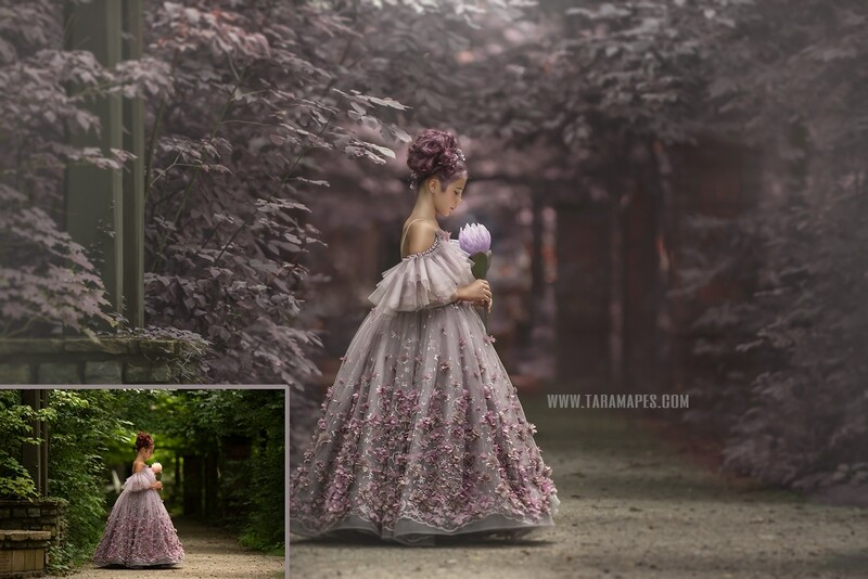 The Purple Path - Painterly Photoshop Tutorial TUTORIAL ONLY- Fine Art Tutorial by Tara Mapes