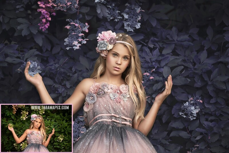 Pink and Blue - Color Grading and Painterly Photoshop Tutorial TUTORIAL ONLY- Fine Art Tutorial by Tara Mapes