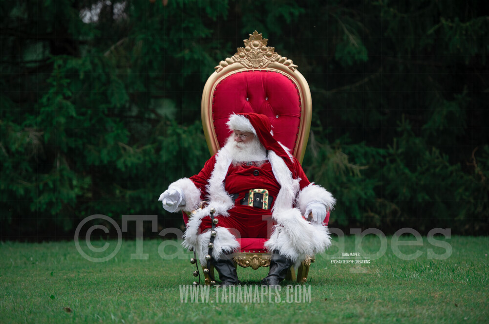 Santa in Throne with Free Snow Overlay - Santa in Christmas Chair by Pine Trees - Outdoor Christmas Holiday Digital Background Backdrop
