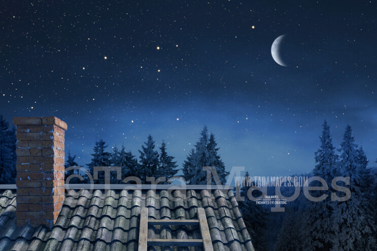 Christmas Rooftop Christmas Roof with Pines Holiday Digital Background Backdrop