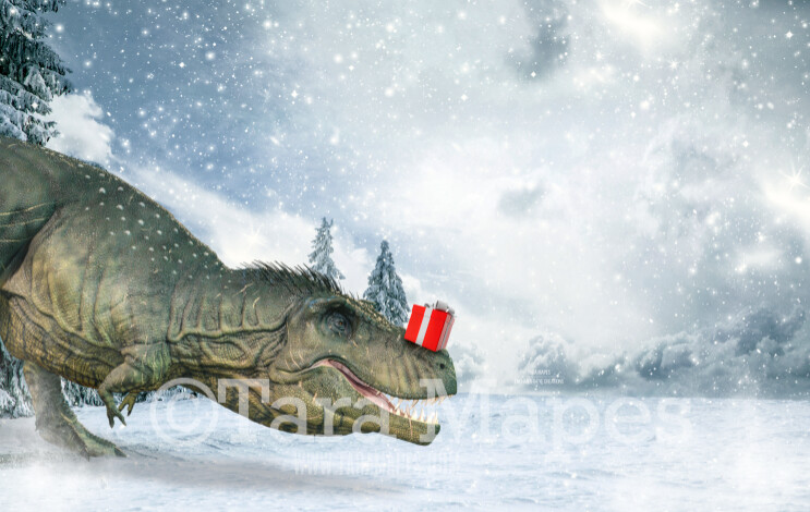 Dinosaur with Christmas Gift - Christmas Dino - T Rex Holiday Digital Background
