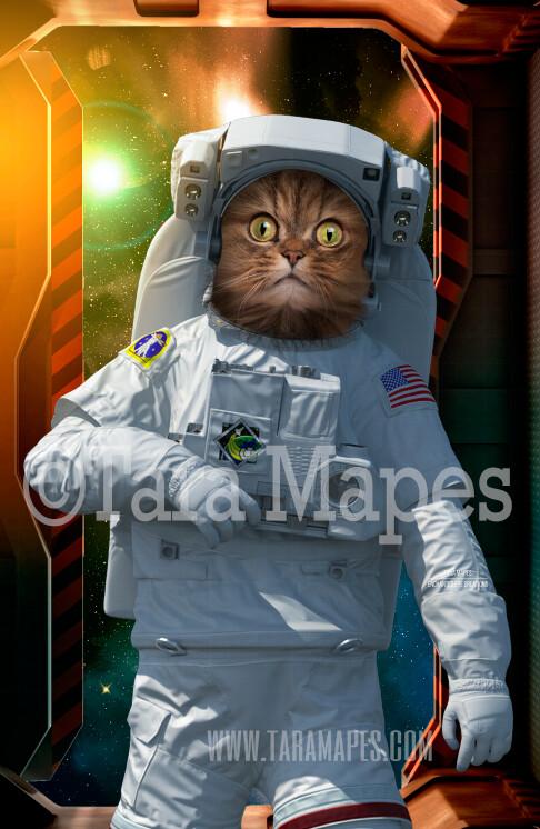 Pet Portrait PSD Template - Pet Astronaut Body Tara Mapes - Layered PSD  Digital Background Backdrop