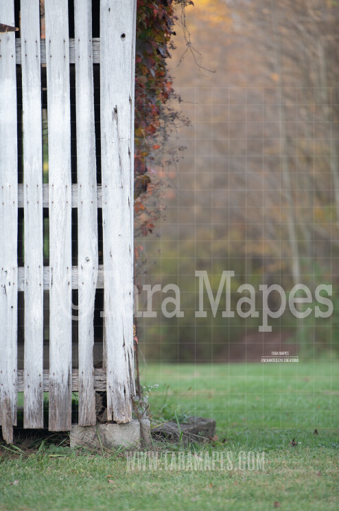 Old Barn Portrait Nature Background - Creamy Digital Background- Old Wooden Barn in Forest - Digital Background