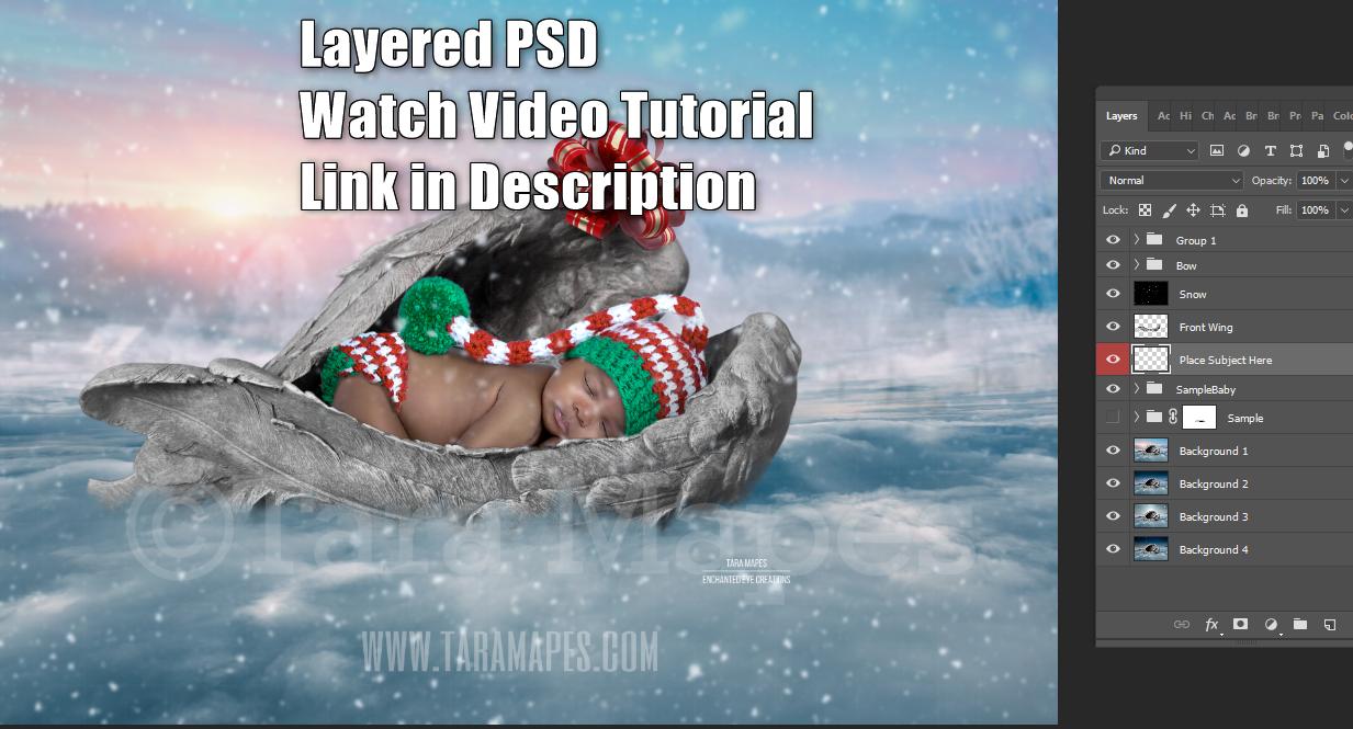 Heaven Sent on Christmas - Christmas Gift Baby Newborn Kitten Pupply - LAYERED PSD   - Christmas Digital Background