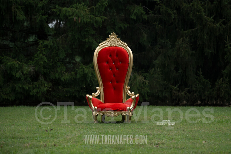 Christmas Throne - Santa's Chair by Pine Trees - Outdoor Christmas Holiday Digital Background Backdrop