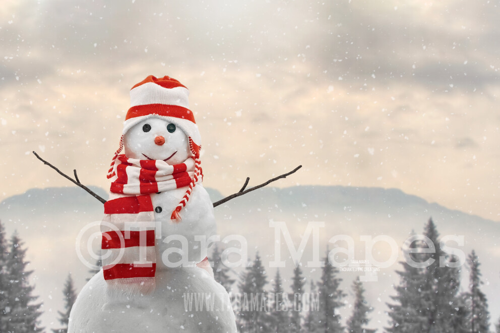Snowman by Mountains - Snowman by Pine Trees - Frosty the Snowman- Snowman in Hat and Scarf - Winter Christmas Digital Background Backdrop
