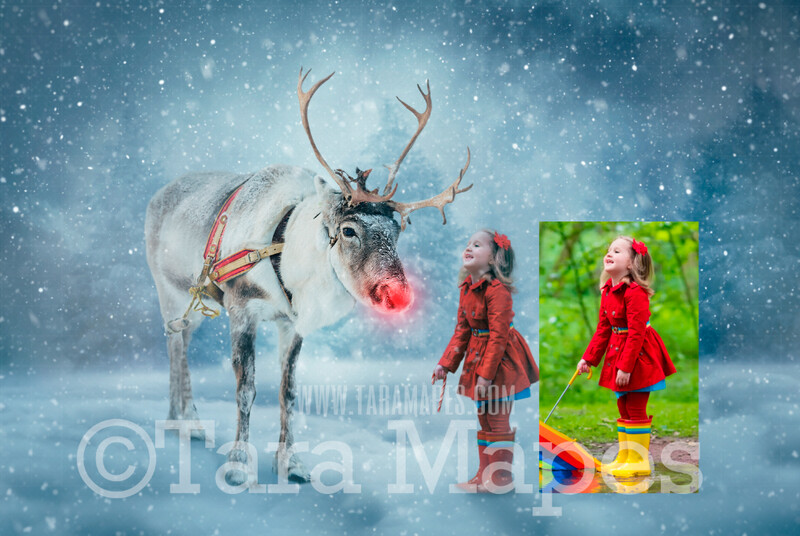 Photoshop Tutorial on How To Extract and Blend Your Subject into Reindeer in Snowy Scene Background in Photoshop by Tara Mapes