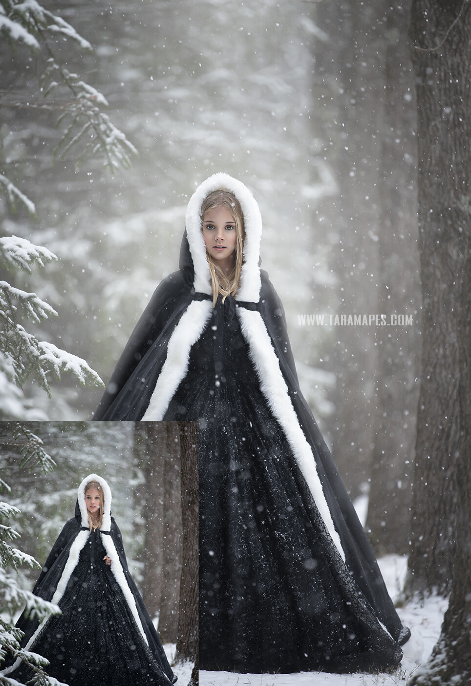 Black Ice Queen- Painterly Photoshop Tutorial TUTORIAL ONLY- Fine Art Tutorial by Tara Mapes