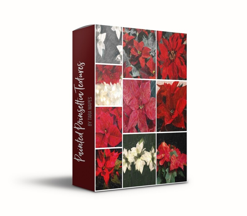 Painted Poinsettias Fine Art Texture Overlays - Oil Paint Floral Textures Photoshop Overlays by Tara Mapes