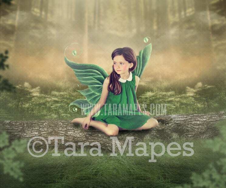 Tree Log in Forest - Spring Log- Fairy Fairy Log - Photoshop Digital Background / Backdrop