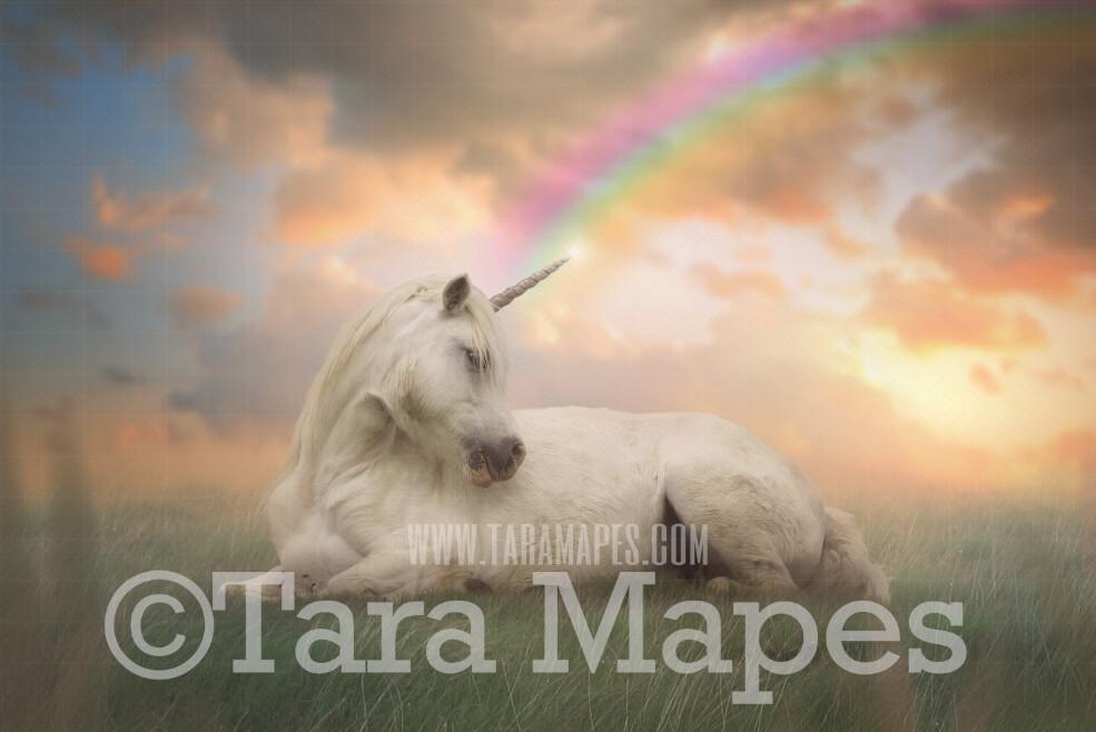 Unicorn in Soft Pastel Field- Unicorn in Field with Rainbow - JPG file Digital Background