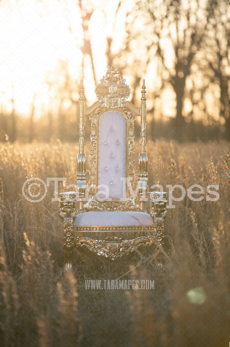 Golden Throne in Golden Field TWO PACK- Throne in Field at Sunset - Royal Natural Digital Background JPG File Portraits Digital Background